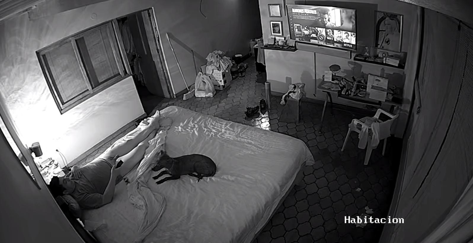 Скрытая видеокамера в комнате молодоженов